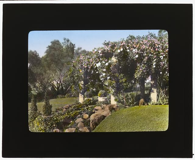 [Mrs. Francis Lemoine Loring house, 700 South San Rafael Avenue, San Rafael Heights, Pasadena, California. Bougainvillea pergola from flower garden to house]