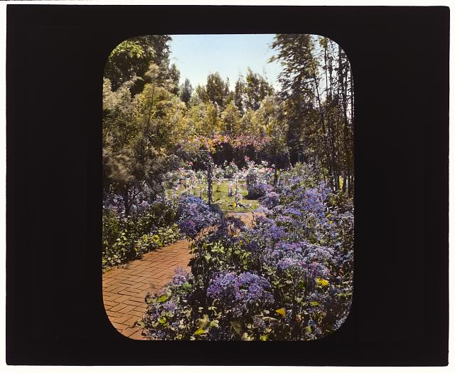 "[""Senuelo,"" Edward Ditmars Wetmore house, 1050 Channel Drive, Montecito, California. Path to rose garden]"