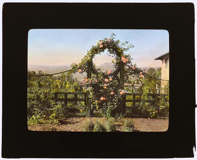 "[""Casa de Mariposa,"" Walter Franklin Cobb house, Butterfly Lane, Montecito, California. Garden gate]"