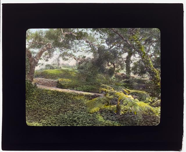 "[""Glen Oaks,"" James Hobart Moore house, East Valley Road, Montecito, California. Pathway]"