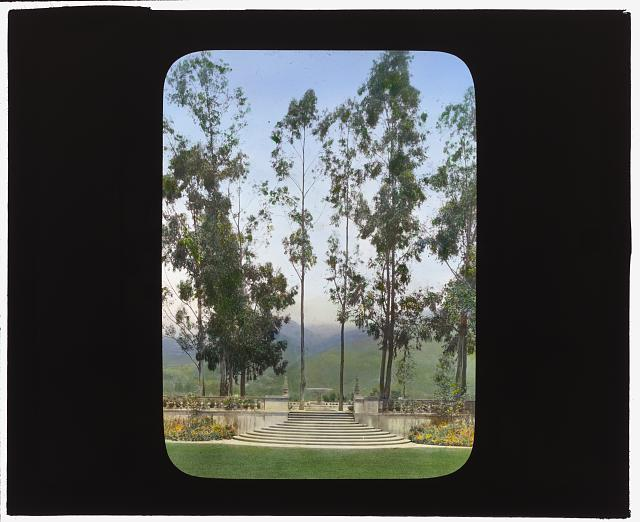 "[""Arcady,"" George Owen Knapp house, Sycamore Canyon Road, Montecito, California. Yellow garden in upper garden]"