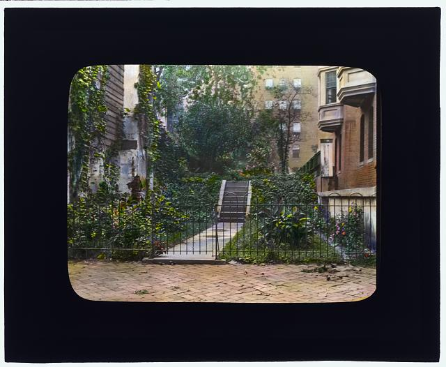 [Unidentified city garden, probably New York, New York. Stairway]