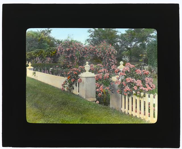 "[""Westlawn,"" Edward Tiffany Dyer house, Great Plains Road, Southampton, New York. Garden fence]"