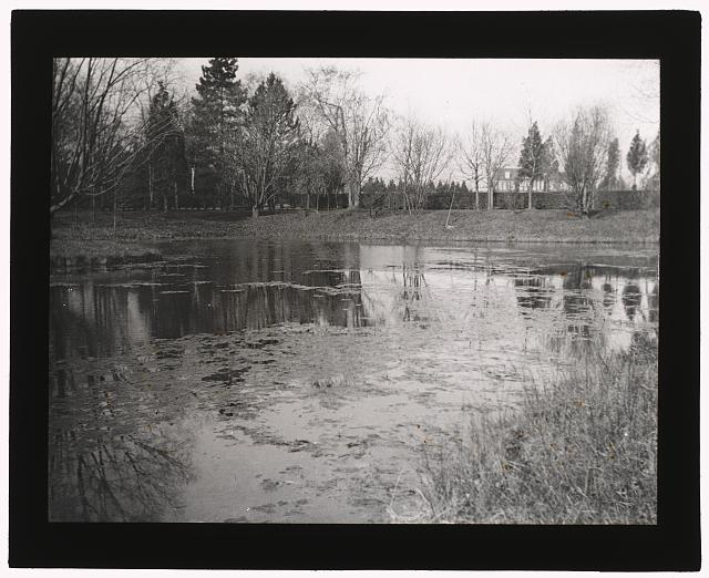"[""Marshfield,"" George Woodward Wickersham house, Cedarhurst, New York. Pond before landscaping]"