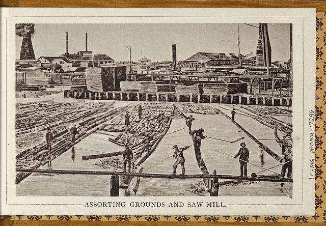 Assorting grounds and saw mill