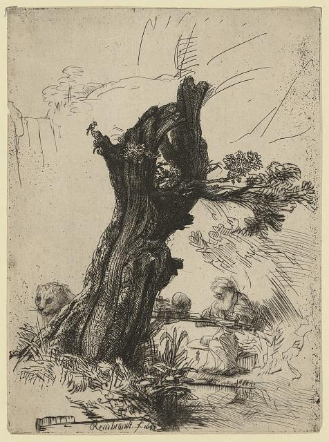 [St. Jerome beside a pollard willow]