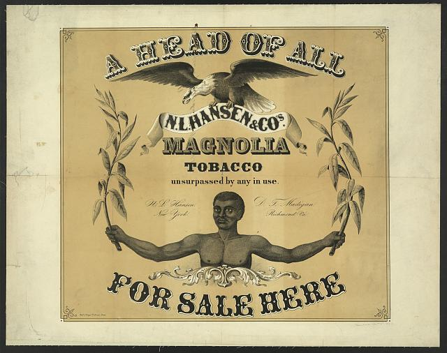 Ahead of all, N.L. Hansen & Co's. Magnolia Tobacco, unsurpassed by any in use. For sale here