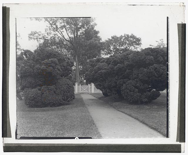 "[""Sylvester Manor,"" Cornelia Horsford house, Shelter Island, New York. Boxwood at pathway]"