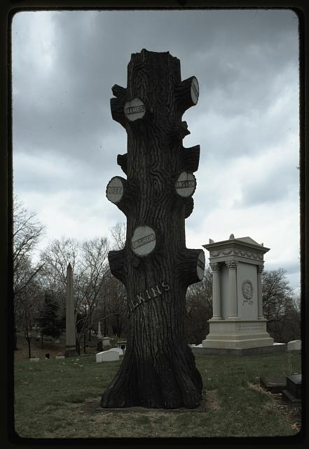 Allegheny Cem[etery], Pittsburgh It looks like the tree is dead, there is no place for branches. Every branch has been terminated.