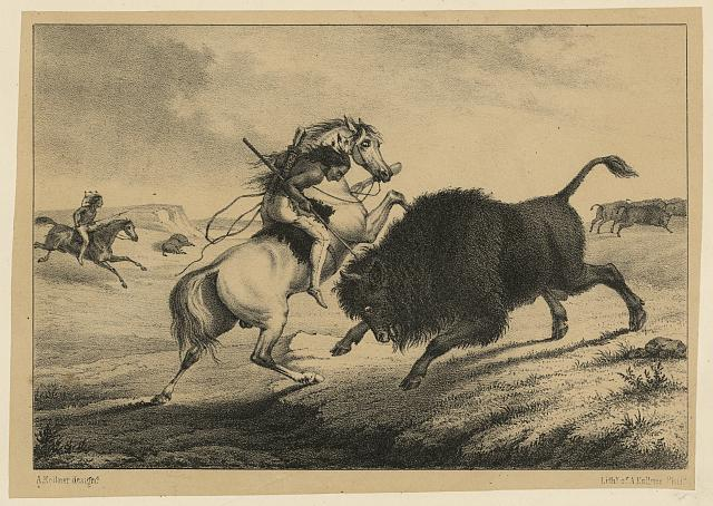 [Print speciman of American Indian man on horseback killing bison]