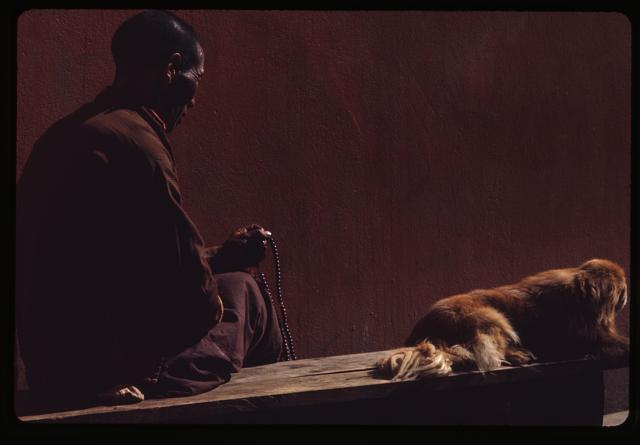 [Lama in meditation, Sikkim]