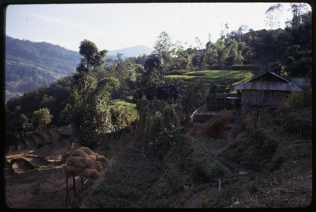 [Farmhouse and terraced fields, Sikkim]