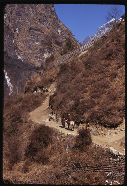 [Mountain path, Lachung, Sikkim]