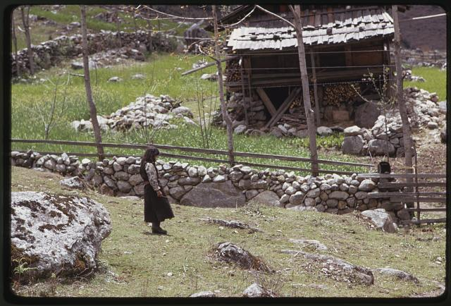 [Woman standing by stone wall near building storing wood, Lachung, Sikkim]