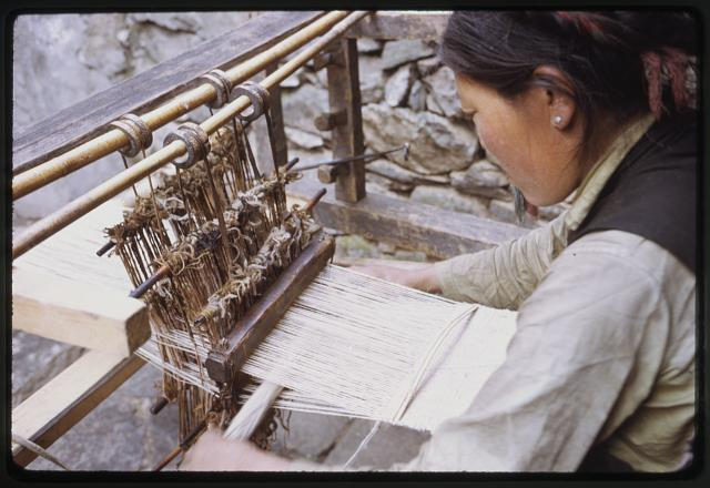 [Woman weaving on loom, Lachung, Sikkim]
