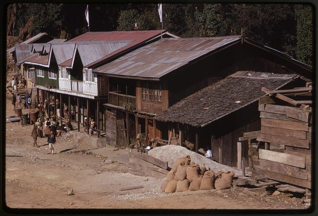 [Buildings along a street in a town, western Sikkim]