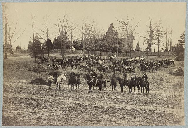 [Union artillery unit posed with cannons and horses]
