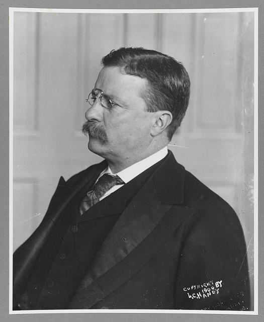 [Pres. Theodore Roosevelt, head-and-shoulders portrait, facing left]