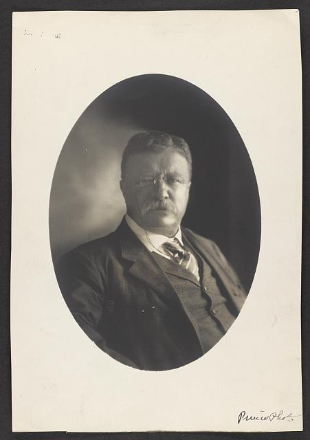 [Theodore Roosevelt : head down]