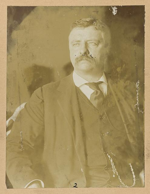 [Theodore Roosevelt, half-length portrait, seated, looking left]