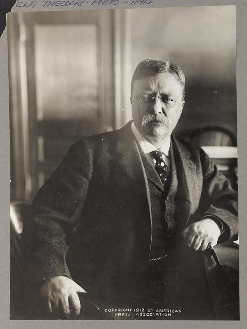 [Theodore Roosevelt, seated, leaning on desk, facing front ]