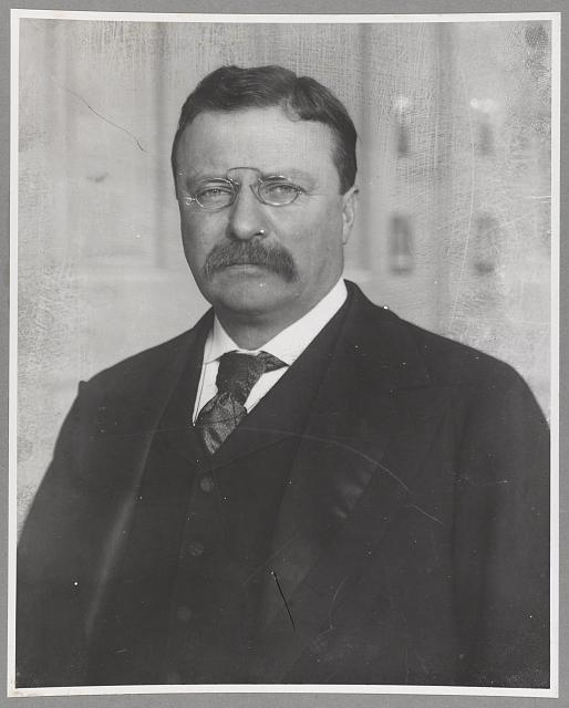 [Theodore Roosevelt, Pres., head and shoulders portrait, facing left]