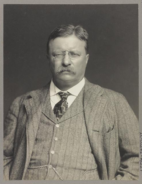 [Theodore Roosevelt, half-length portrait, facing front]
