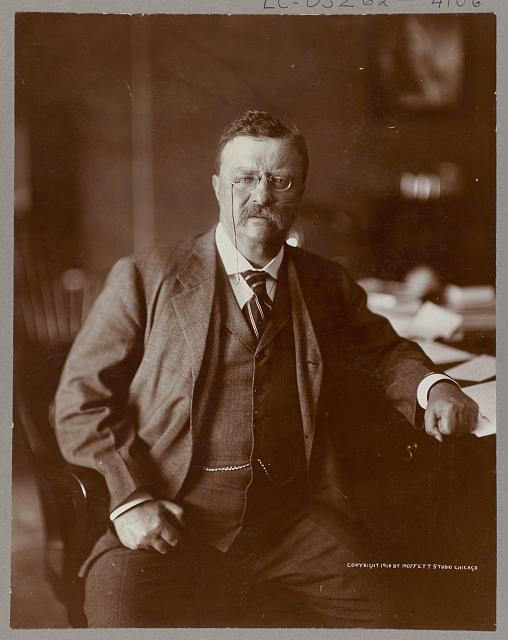 [Theodore Roosevelt, half-length portrait, seated, facing front]