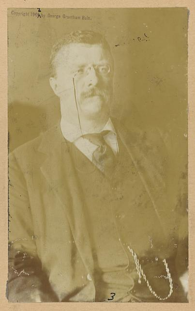 [Theodore Roosevelt, half-length portrait, seated, facing slightly right]