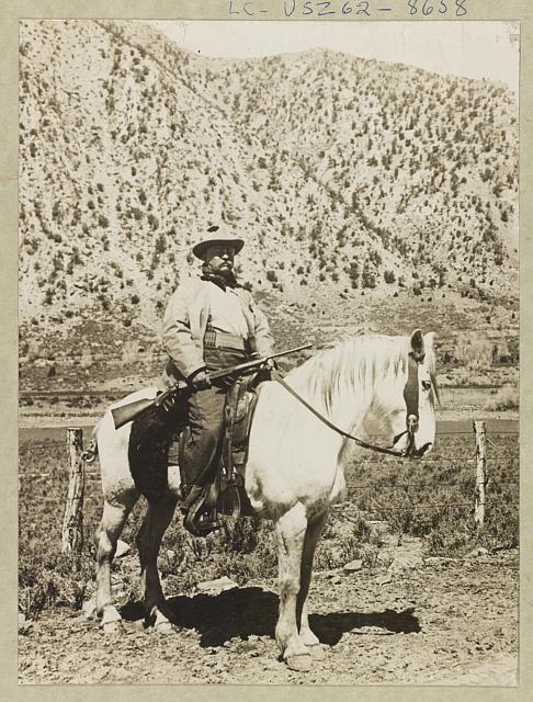 [Theodore Roosevelt on horseback carrying rifle]