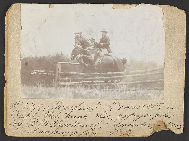 [President Theodore Roosevelt and Capt. Fitzhugh, on horseback, jumping fence]