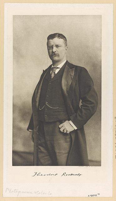[Theodore Roosevelt, three-quarter length portrait, standing, thumb in pocket, facing left]