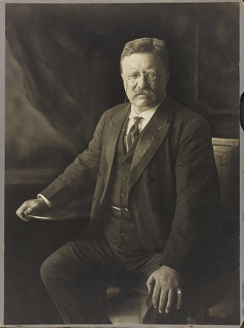 [Theodore Roosevelt, three-quarter length portrait, seated, facing front]