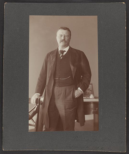 [Theodore Roosevelt, three-quarter length portrait, standing]