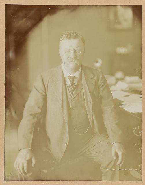 [Theodore Roosevelt, three-quarter length portrait, seated, facing front, hands resting on knees]