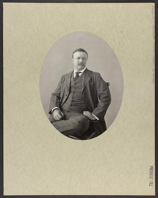 [President Theodore Roosevelt three-quarter length portrait, seated left, looking slightly right]