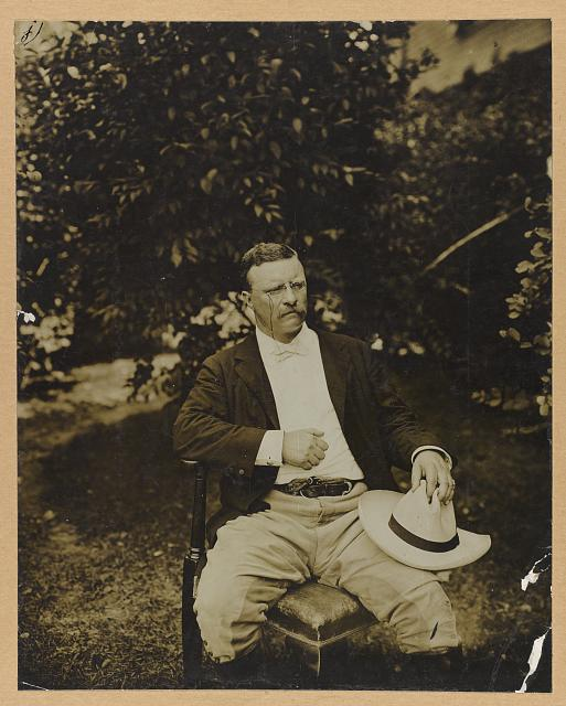 [Theodore Roosevelt, three-quarter length portrait, outdoors, seated in a chair, facing right]