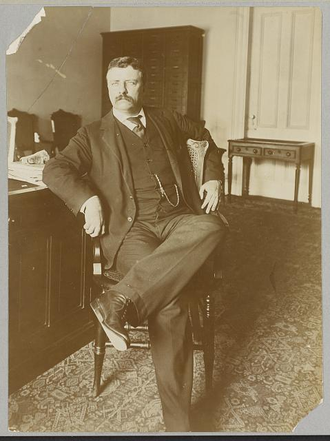 [Theodore Roosevelt, full-length portrait, in office sitting in chair , facing front]