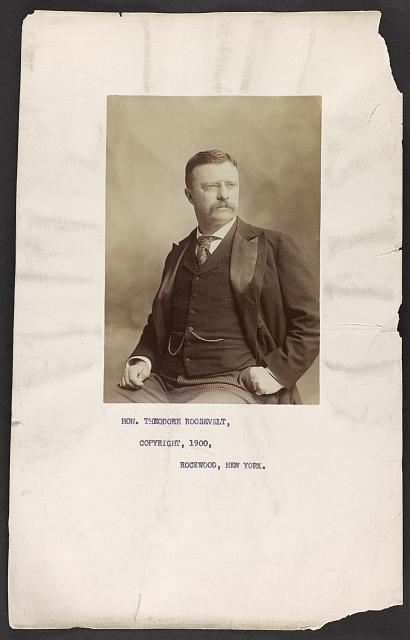 [Hon. Theodore Roosevelt, three-quarter length portrait, seated, facing right]