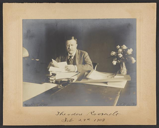 [Theodore Roosevelt, seated at desk, roses in vase at right]