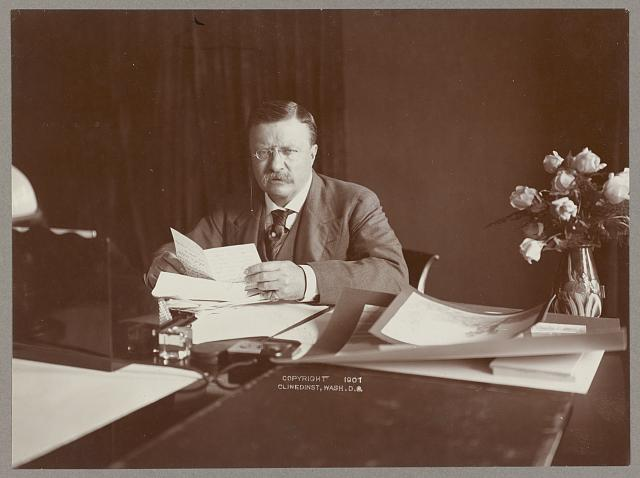 [Theodore Roosevelt seated at desk] [graphic].