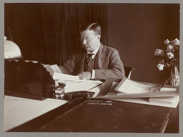[Theodore Roosevelt seated at desk, reading, roses in vase at right]