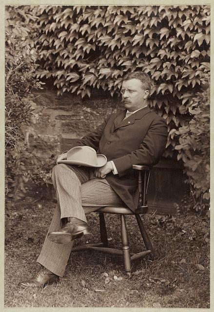 [Theodore Roosevelt, full-length portrait, turned left, seated in chair outdoors]