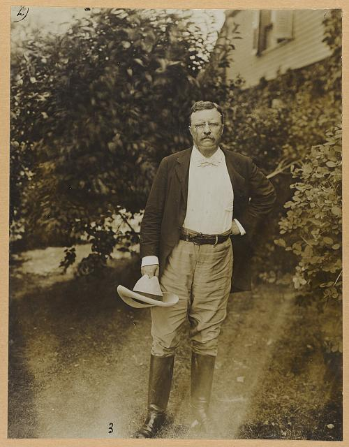 [Theodore Roosevelt, full-length portrait, facing front]