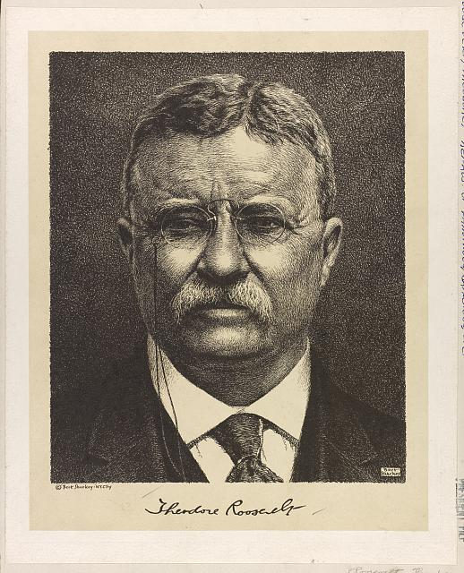 [Theodore Roosevelt, portrait of head, full face view]
