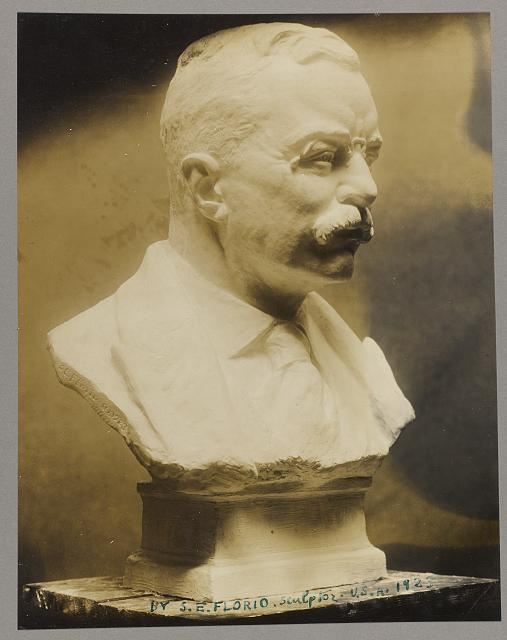 [Bust of Theodore Roosevelt, facing right]