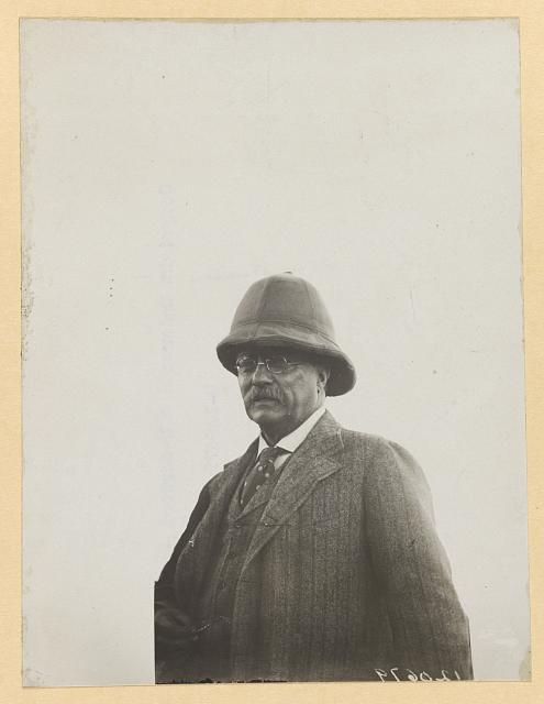 [Theodore Roosevelt, head-and-shoulders portrait, facing left]