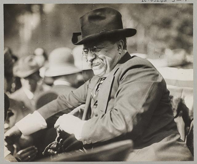 [Theodore Roosevelt smiling from an automobile]