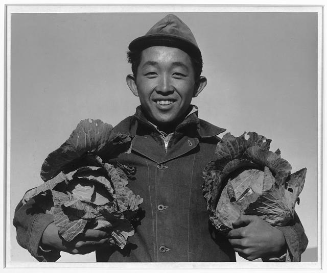 Richard Kobayashi, farmer with cabbages, Manzanar Relocation Center, California