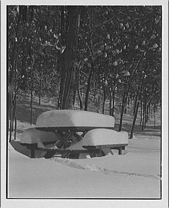 Winter scenes. View in Rock Creek Park showing lunch bench